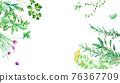 herbal, frame, vector 76367709