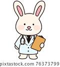 rabbit, animal, animals 76373799
