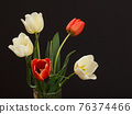 Bouquet of yellow tulips in vase on a black background. 76374466