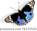 Blue Pansy Butterfly 76375543