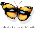 Yellow Pansy Butterfly 76375546