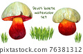 Devils bolete watercolor set with mushroom and grass bunch 76381312