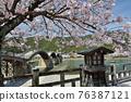 Kinzaki橋和櫻花盛開 76387121