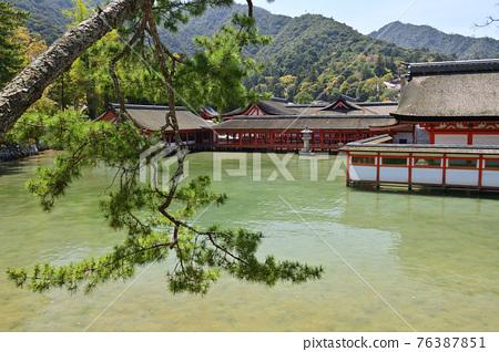 嚴島神社 宮島 神殿 76387851