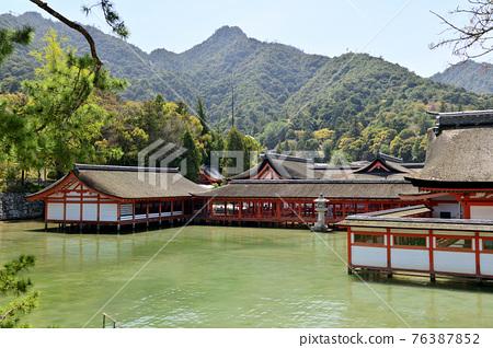 嚴島神社 宮島 神殿 76387852