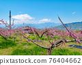 야마나시 현 봄의 도원 향 도원 석가 당 PA 지역 76404662