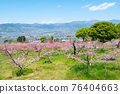 야마나시 현 봄의 도원 향 도원 석가 당 PA 지역 76404663
