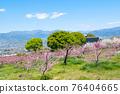 야마나시 현 봄의 도원 향 도원 석가 당 PA 지역 76404665