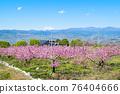 야마나시 현 봄의 도원 향 도원 석가 당 PA 지역 76404666
