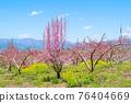 야마나시 현 봄의 도원 향 도원 석가 당 PA 지역 76404669