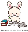 rabbit, animal, animals 76409636