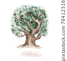 Watercolor Genealogical Family tree. Watercolor children's tree botanical season isolated illustration. olive, oak and cypress. Green forest ecology branch and leaves. 76412316
