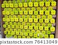 votive picture, clover, shrine 76413049