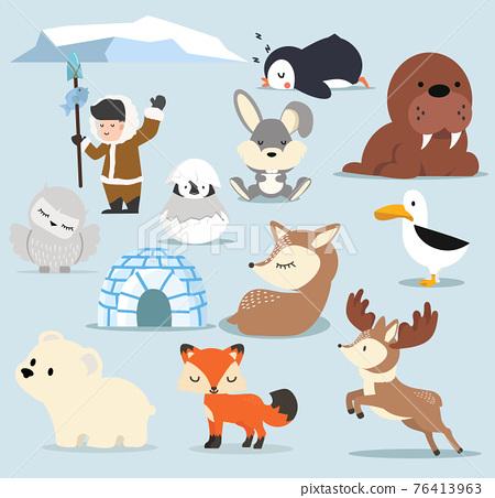 Cute Arctic  flat design Cartoon characters  set 76413963