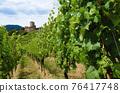 Vineyards and castle ruins of Keysersberg, winemaking village in Alsace (france) 76417748