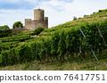 Vineyards and castle ruins of Keysersberg, winemaking village in Alsace (france) 76417751