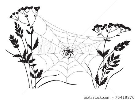 Monochrome Big Spider on Web 76419876