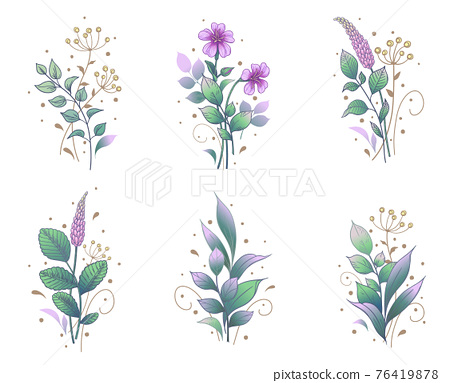 Hand Drawn Floral Set with Flowers and Leaves Bunches 76419878