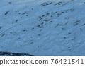 霜 冰 冰冷 76421541