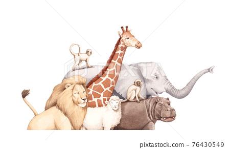 動物 76430549