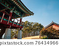 Maryang-ri Camellia Forest in Seocheon, Korea 76434966