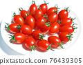 迷你番茄(愛子) 76439305