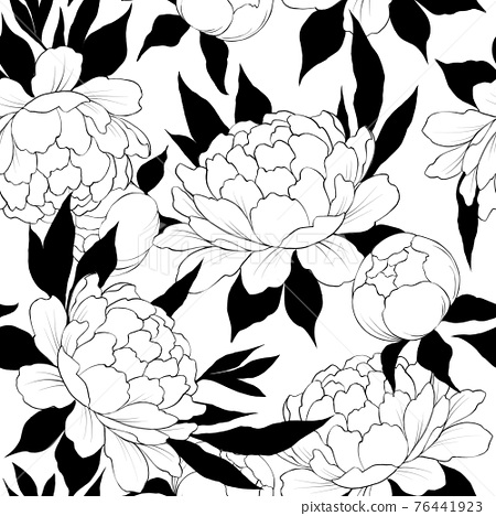 Elegance seamless pattern with flower peony. Floral background 76441923
