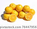神奈川縣製造 柑橘 提神 76447956