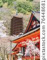 談山 신사의 벚꽃 76448681