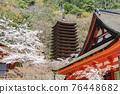 談山 신사의 벚꽃 76448682