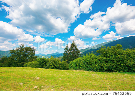 rural landscape in carpathian mountains. summer nature scenery with trees on the meadow. fluffy clouds on the bright blue sky. beautiful view in to the distant hills and valley 76452669