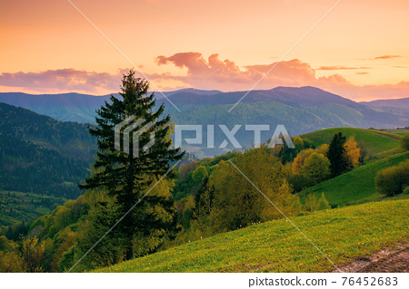 rolling rural mountain landscape at dusk. gorgeous nature scenery in spring. clouds on the sky in evening light 76452683