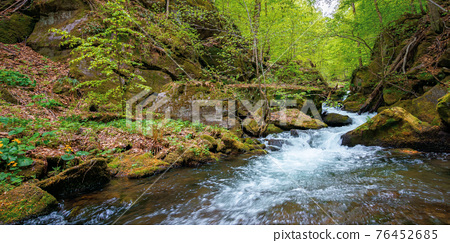 creek winding through rocks in the forest. rapid water flows among mossy boulders and beech trees. wonderful nature scenery in spring 76452685