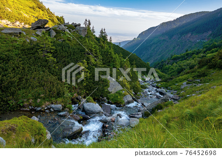 alpine balea stream in mountains. water flows among the stones and trees. beautiful summer landscape in the morning. view in to the distant valley of fagaras ridge 76452698