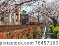 cherry blossom, cherry tree, sakura 76457193