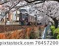 cherry blossom, cherry tree, sakura 76457200