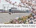 cherry blossom, cherry tree, sakura 76457202