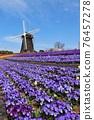 windmill 76457278