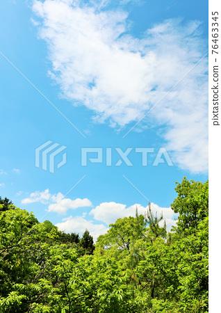 藍天和初夏新綠色風景 76463345
