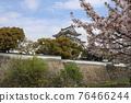 벚꽃과 기시와다 성 76466244