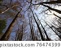 台灣登山攝影 深秋的森林 76474399