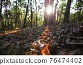 台灣登山攝影 深秋的森林 76474402