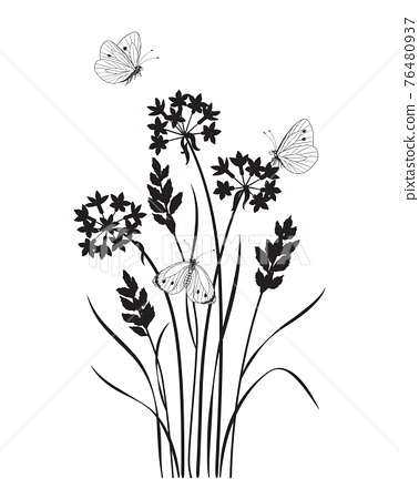 Monochrome Composition with  Butterflies and Wildflowers 76480937