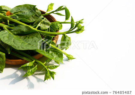 Ceylon spinach leaves on white 76485487