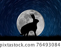 Hare silhouette in the moonlit starry sky 76493084