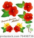 Hibiscus (red) 76498736