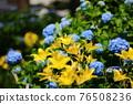 flower, flowers, botanic 76508236