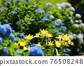 flower, flowers, botanic 76508248