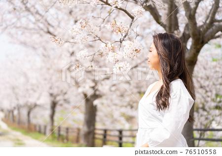 櫻桃女人肖像 76510558