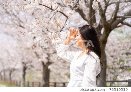 櫻桃女人肖像 76510559